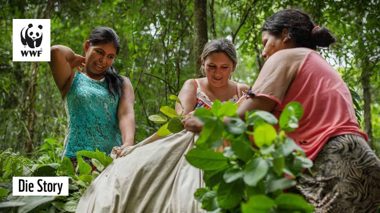 latin women dating